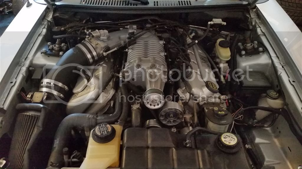 For Sale - 2003 Cobra Mustang - Silver Metallic | Ford ...
